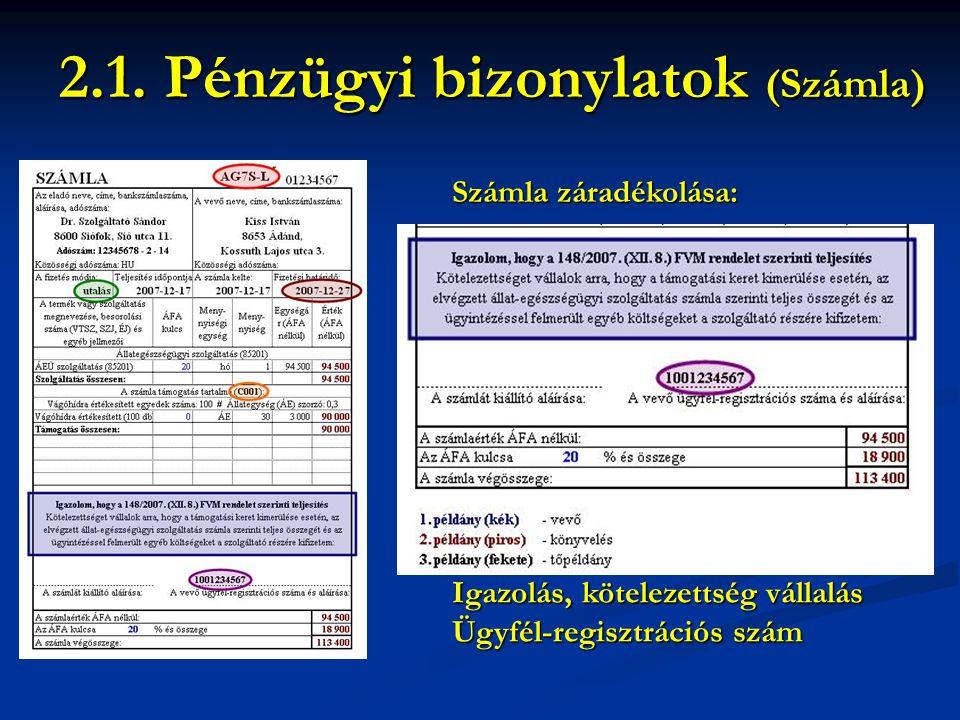 2.1. Pénzügyi bizonylatok (Számla)