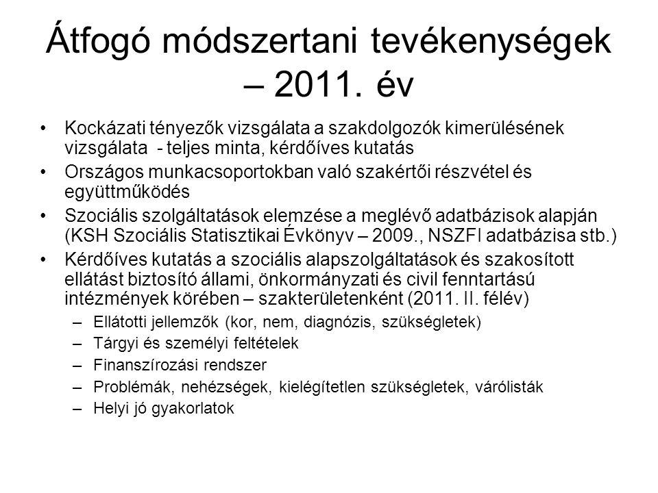 Átfogó módszertani tevékenységek – 2011. év