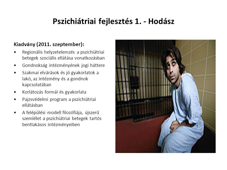 Pszichiátriai fejlesztés 1. - Hodász