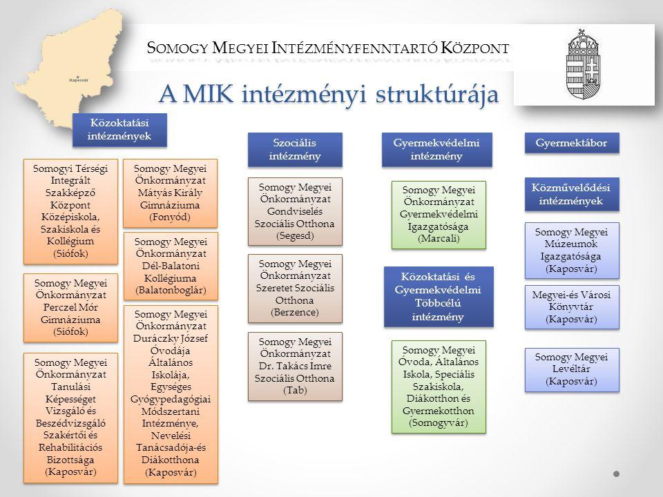 A MIK intézményi struktúrája