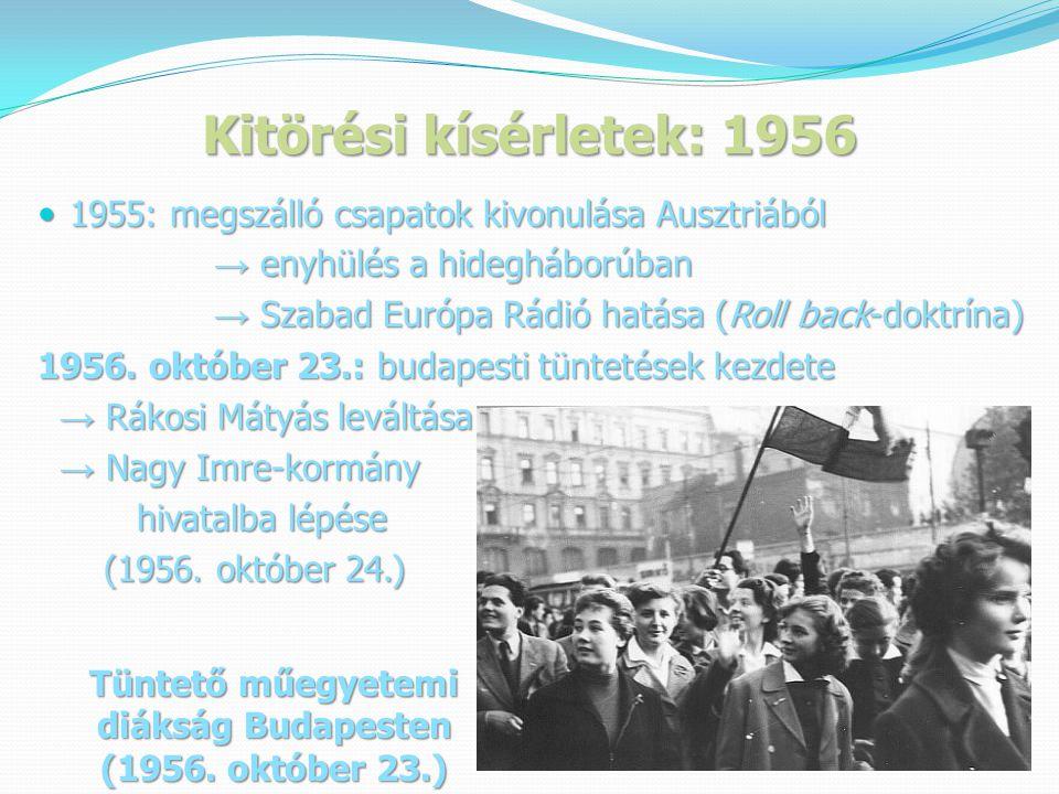 Tüntető műegyetemi diákság Budapesten