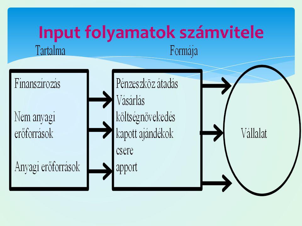 Input folyamatok számvitele