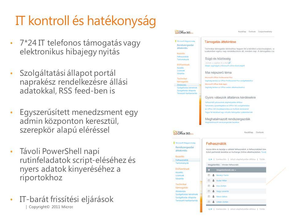 IT kontroll és hatékonyság