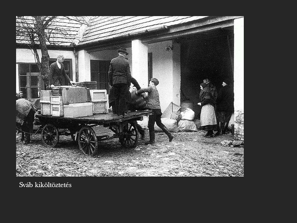 Sváb kiköltöztetés