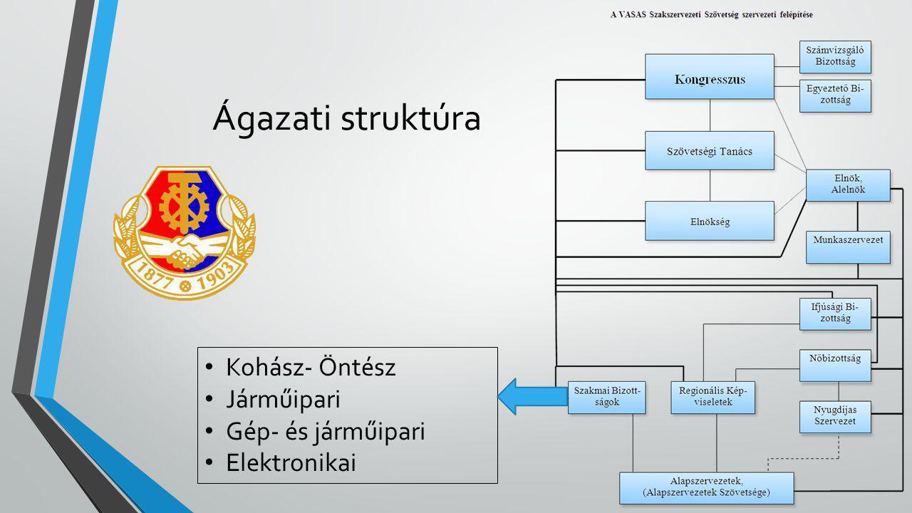 Ágazati struktúra Kohász- Öntész Járműipari Gép- és járműipari