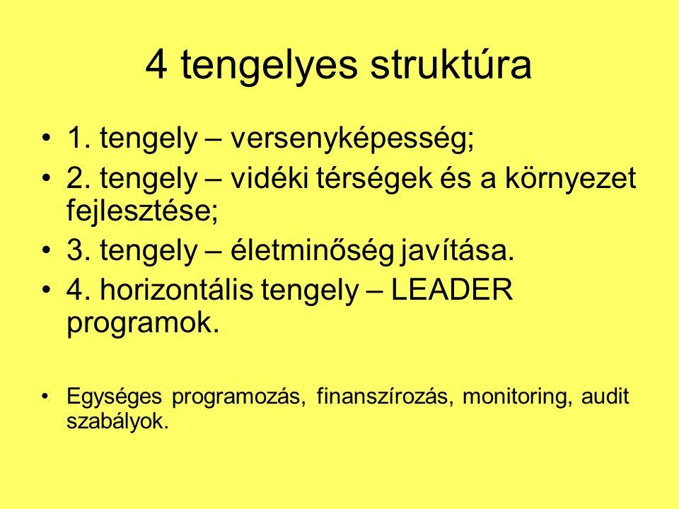 4 tengelyes struktúra 1. tengely – versenyképesség;