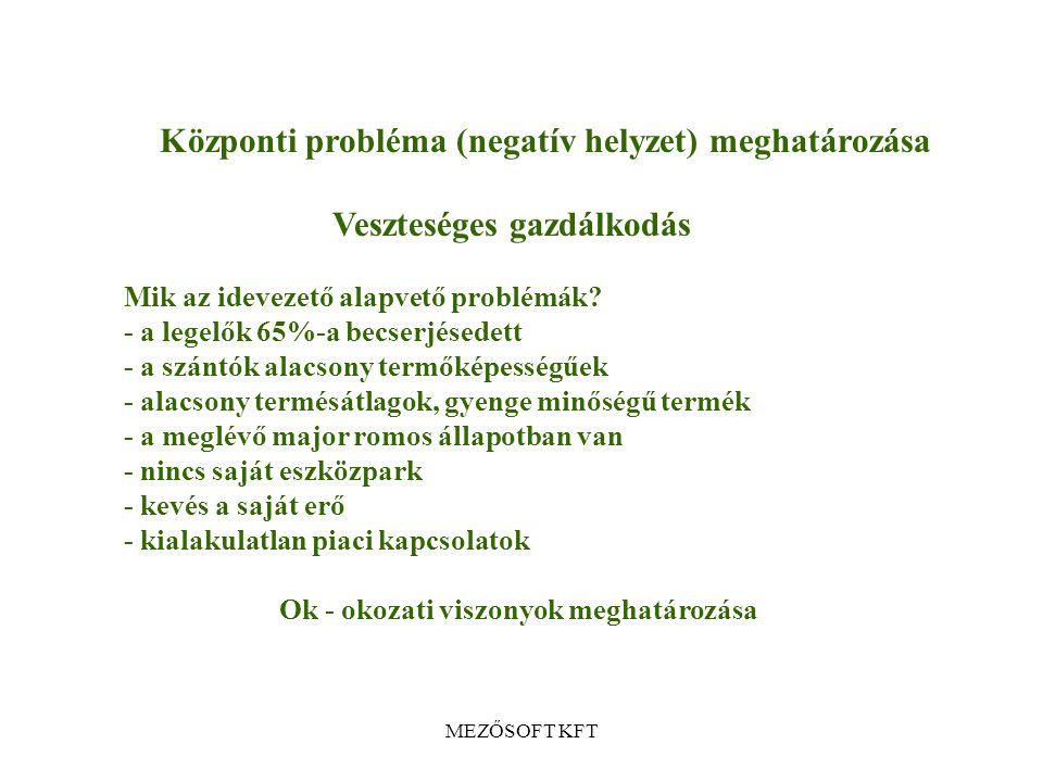 K Központi probléma (negatív helyzet) meghatározása