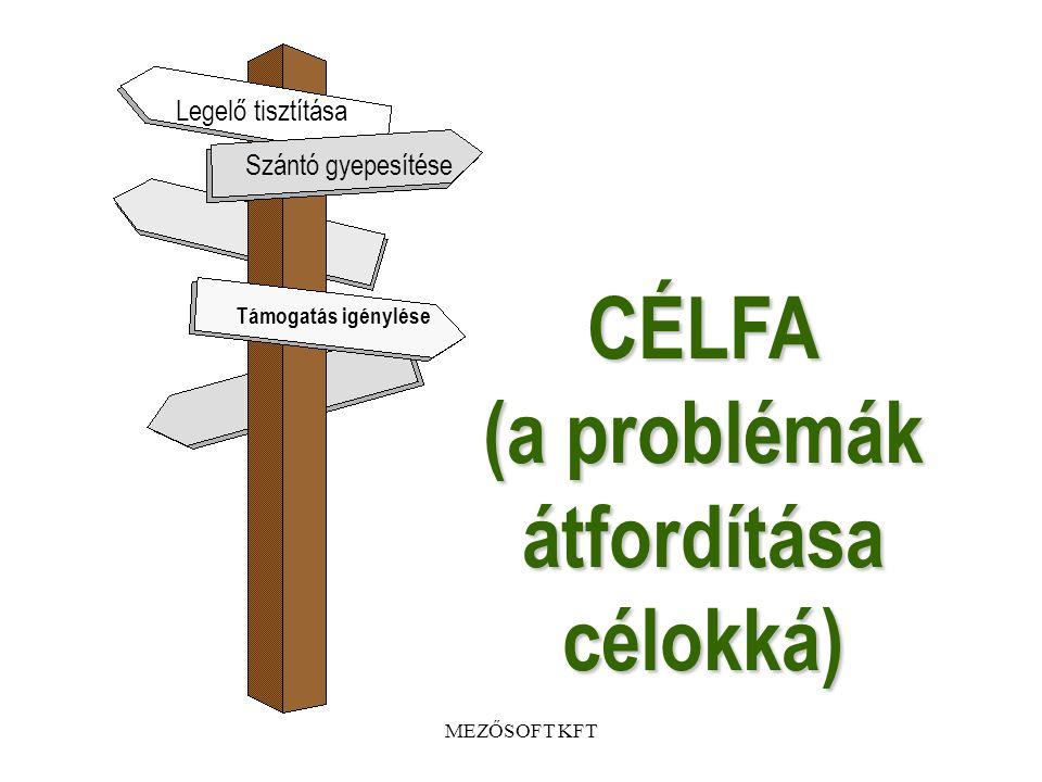 CÉLFA (a problémák átfordítása célokká)
