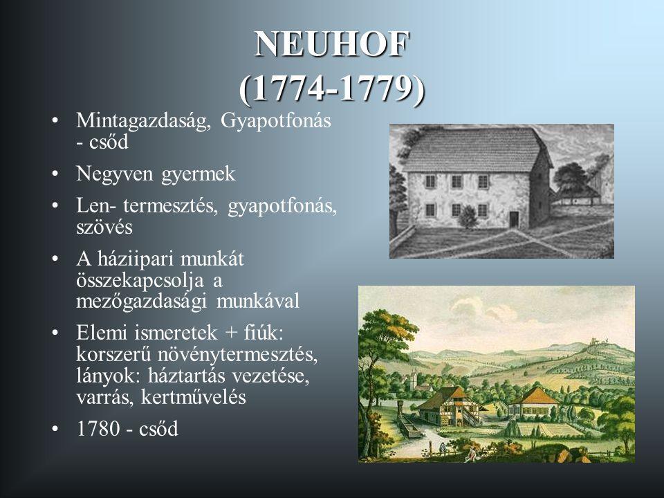NEUHOF (1774-1779) Mintagazdaság, Gyapotfonás - csőd Negyven gyermek