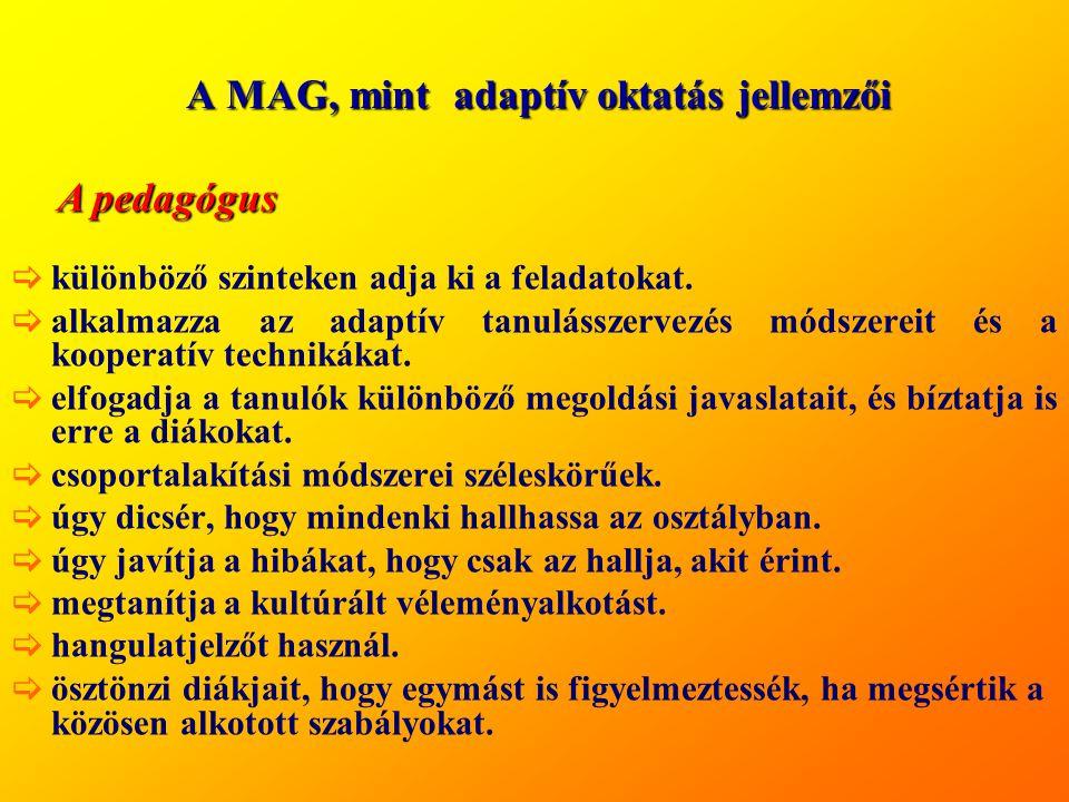 A MAG, mint adaptív oktatás jellemzői