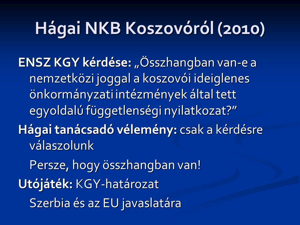 Hágai NKB Koszovóról (2010)