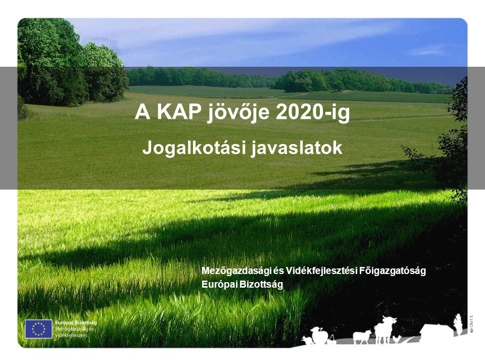 A KAP jövője 2020-ig Jogalkotási javaslatok