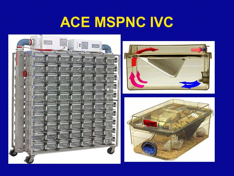 ACE MSPNC IVC