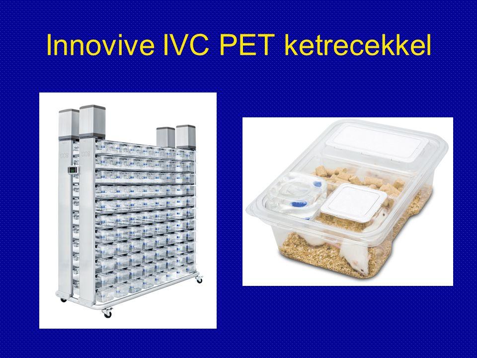 Innovive IVC PET ketrecekkel