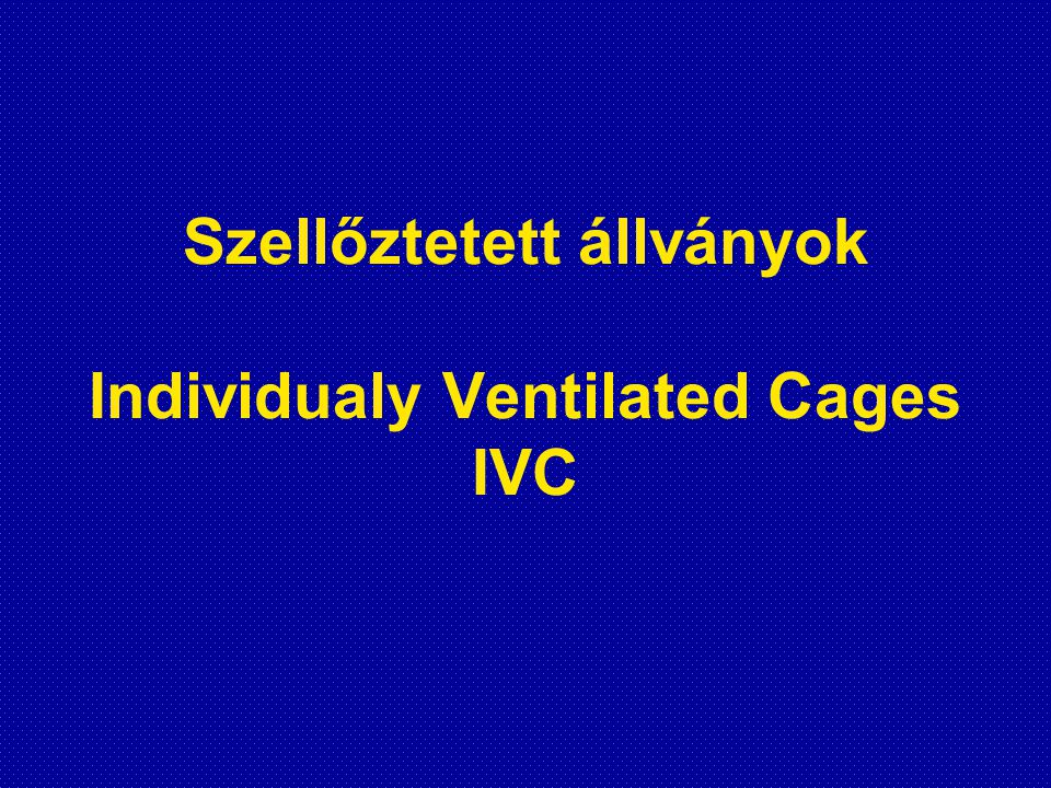 Szellőztetett állványok Individualy Ventilated Cages IVC