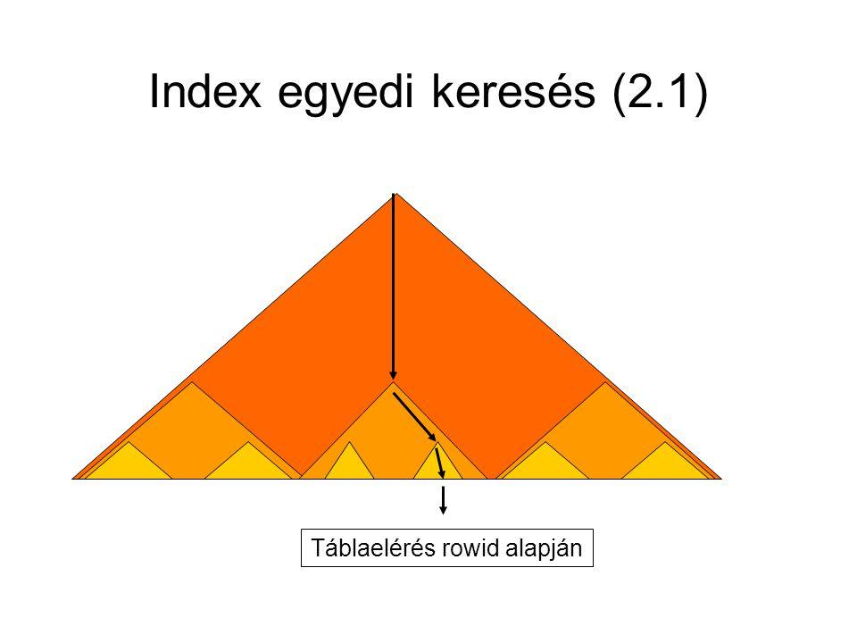 Index egyedi keresés (2.1)
