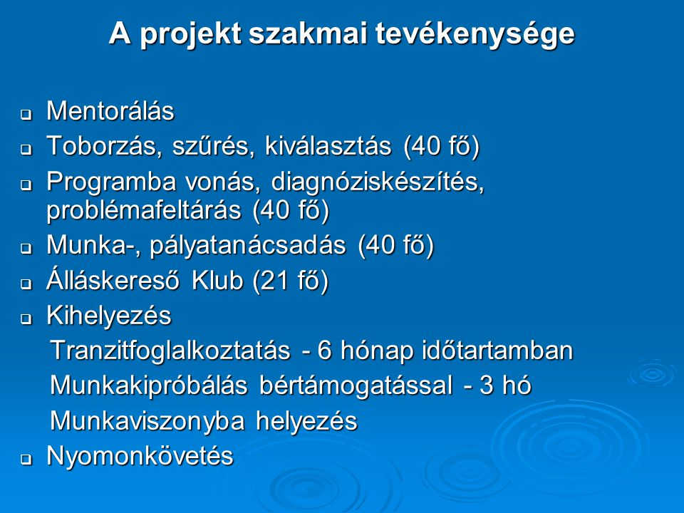 A projekt szakmai tevékenysége