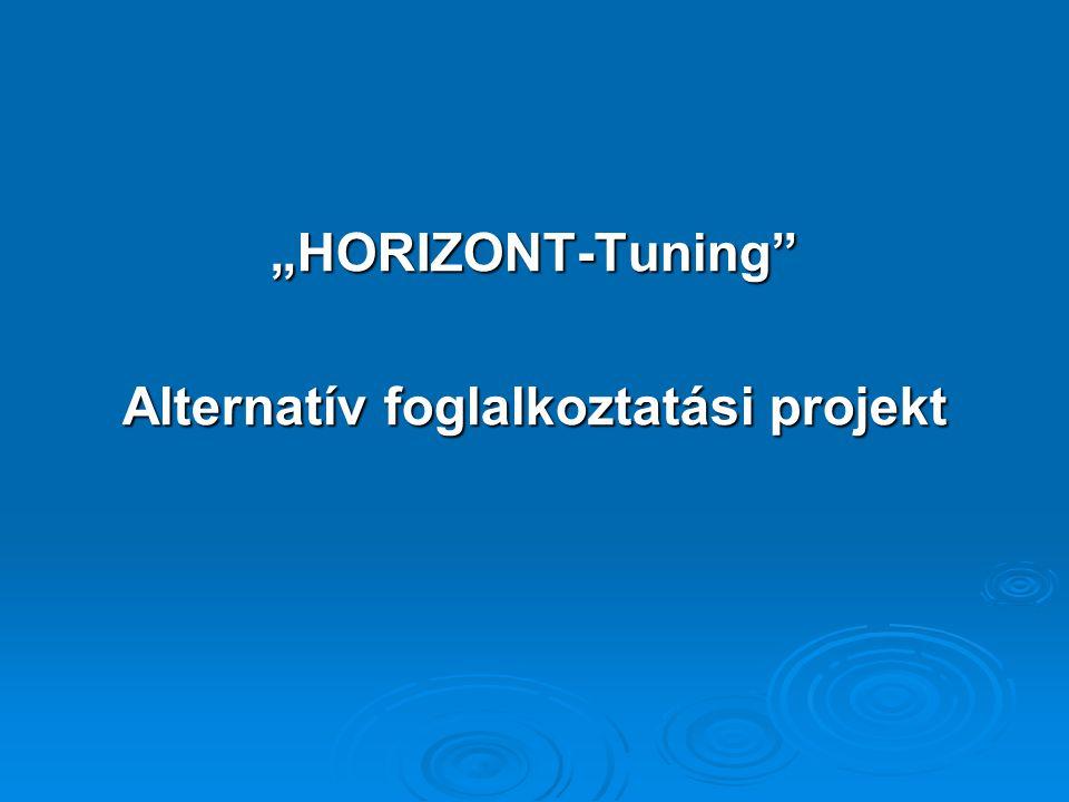 Alternatív foglalkoztatási projekt
