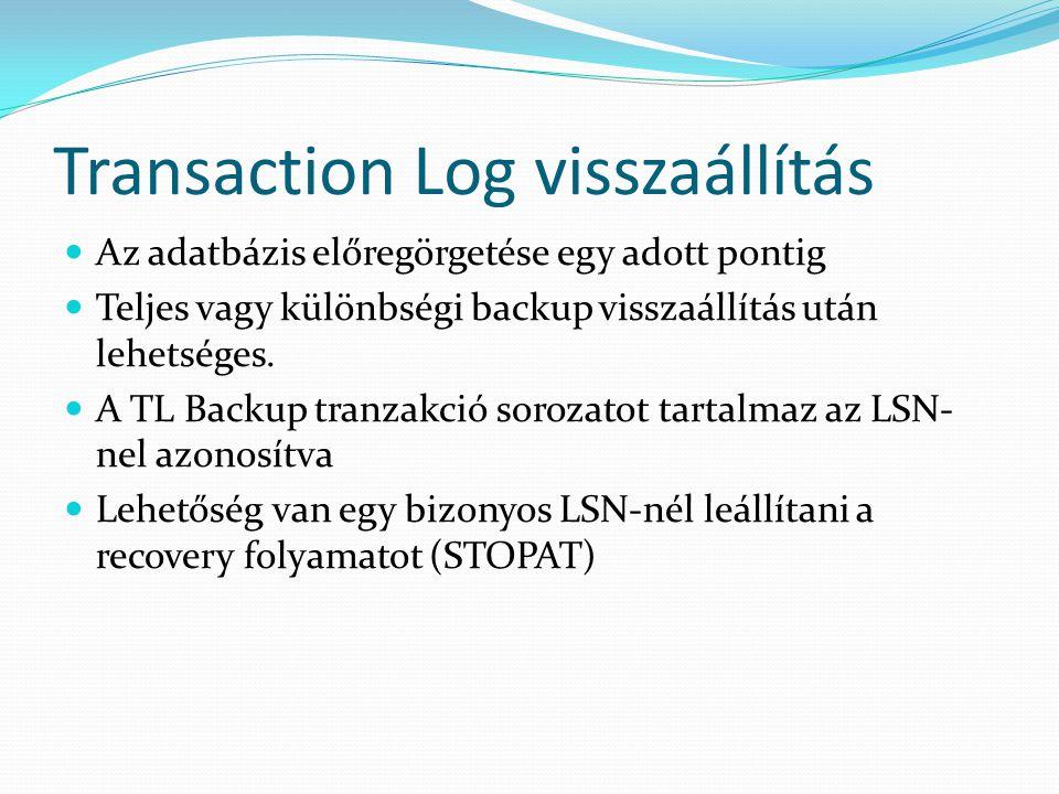 Transaction Log visszaállítás