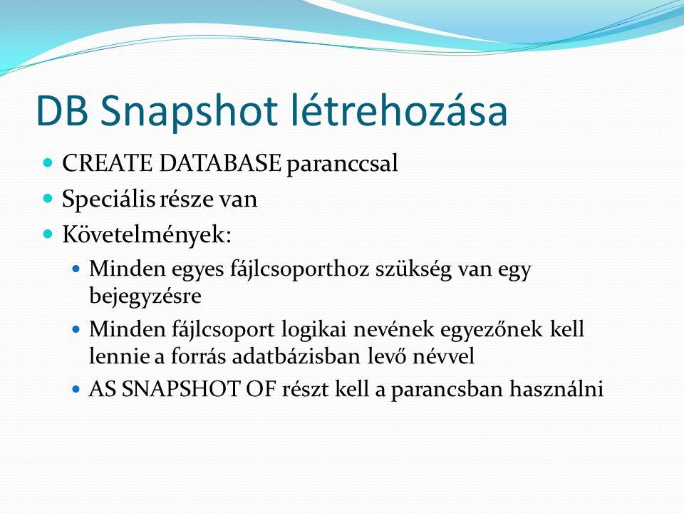 DB Snapshot létrehozása