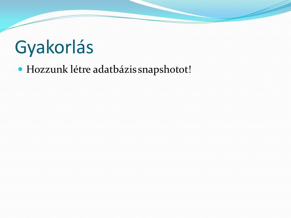 Gyakorlás Hozzunk létre adatbázis snapshotot!