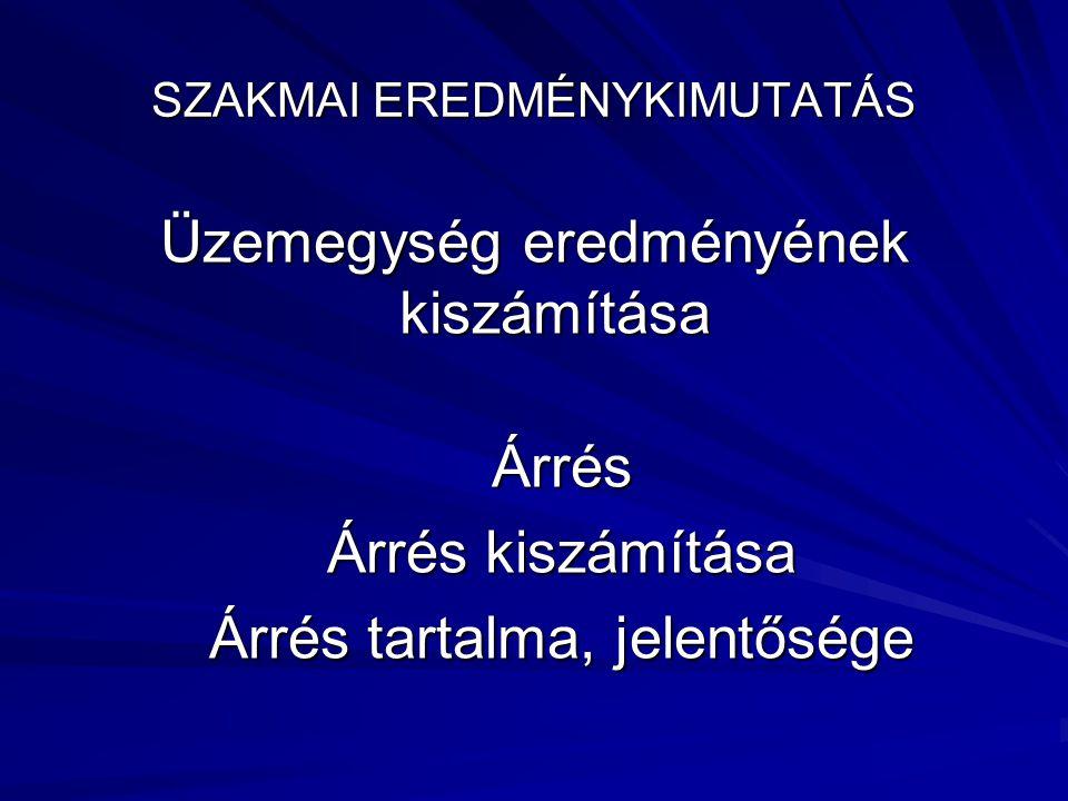 SZAKMAI EREDMÉNYKIMUTATÁS