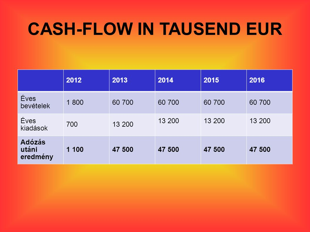 CASH-FLOW IN TAUSEND EUR