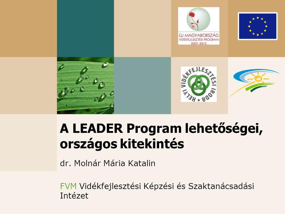 A LEADER Program lehetőségei, országos kitekintés