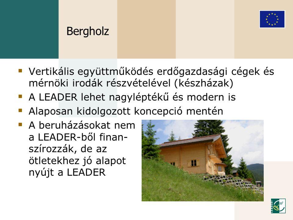 Bergholz Vertikális együttműködés erdőgazdasági cégek és mérnöki irodák részvételével (készházak) A LEADER lehet nagyléptékű és modern is.