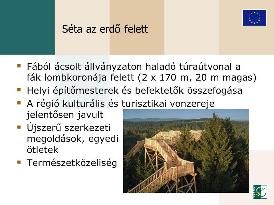 Séta az erdő felett Fából ácsolt állványzaton haladó túraútvonal a fák lombkoronája felett (2 x 170 m, 20 m magas)