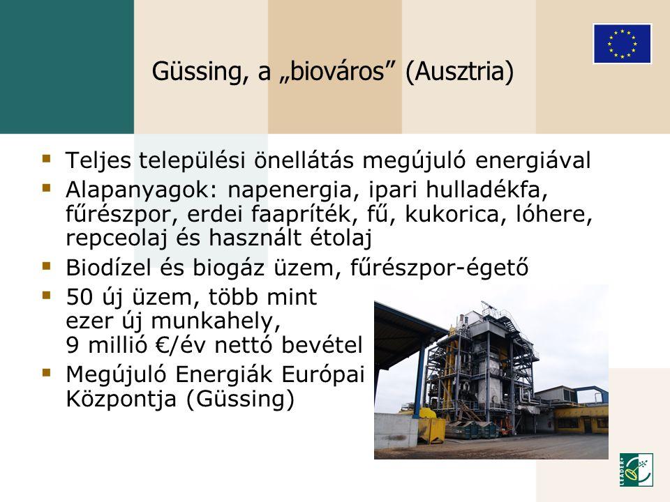 """Güssing, a """"biováros (Ausztria)"""