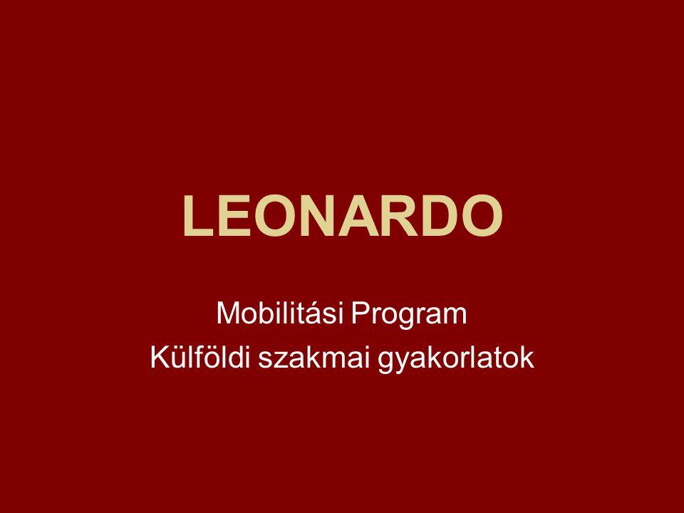 Mobilitási Program Külföldi szakmai gyakorlatok