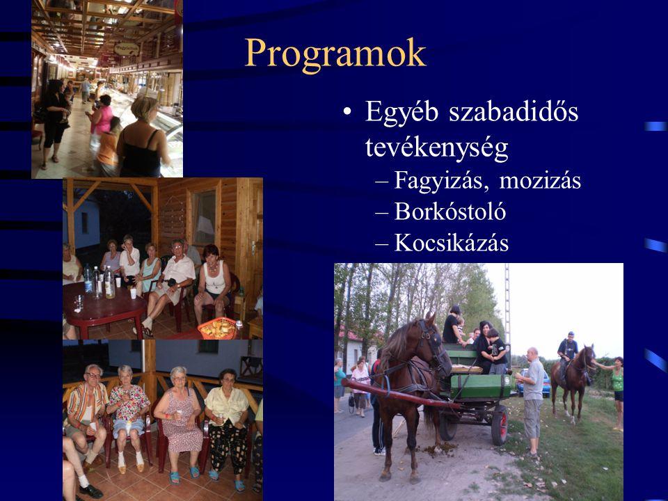 Programok Egyéb szabadidős tevékenység Fagyizás, mozizás Borkóstoló