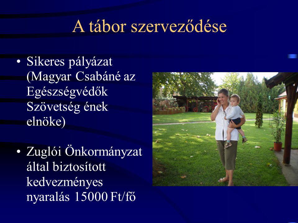 A tábor szerveződése Sikeres pályázat (Magyar Csabáné az Egészségvédők Szövetség ének elnöke)