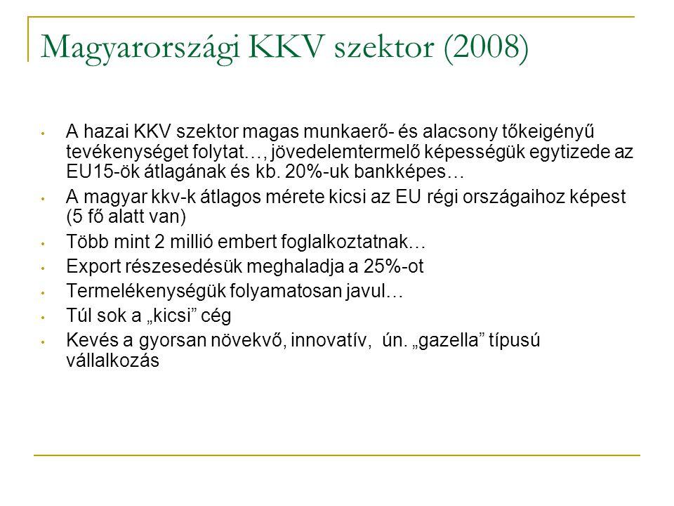Magyarországi KKV szektor (2008)