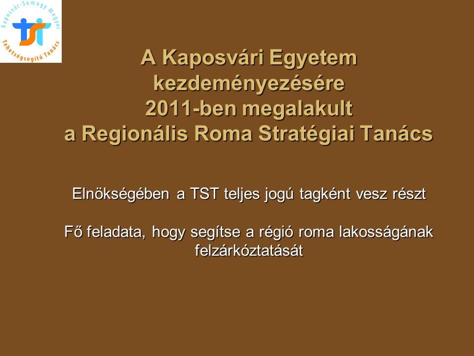A Kaposvári Egyetem kezdeményezésére 2011-ben megalakult a Regionális Roma Stratégiai Tanács Elnökségében a TST teljes jogú tagként vesz részt Fő feladata, hogy segítse a régió roma lakosságának felzárkóztatását