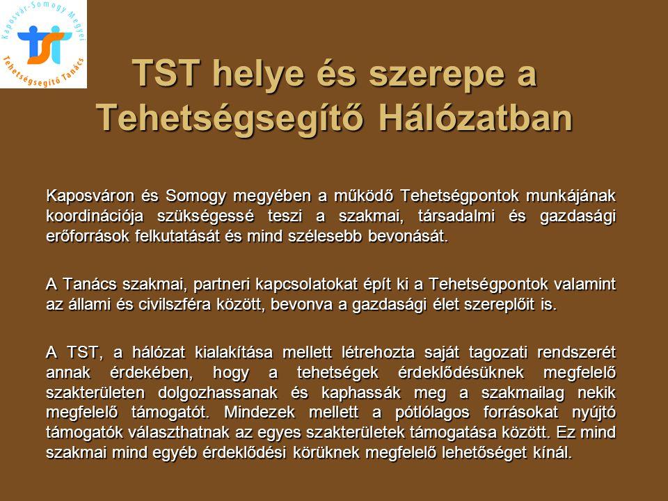 TST helye és szerepe a Tehetségsegítő Hálózatban