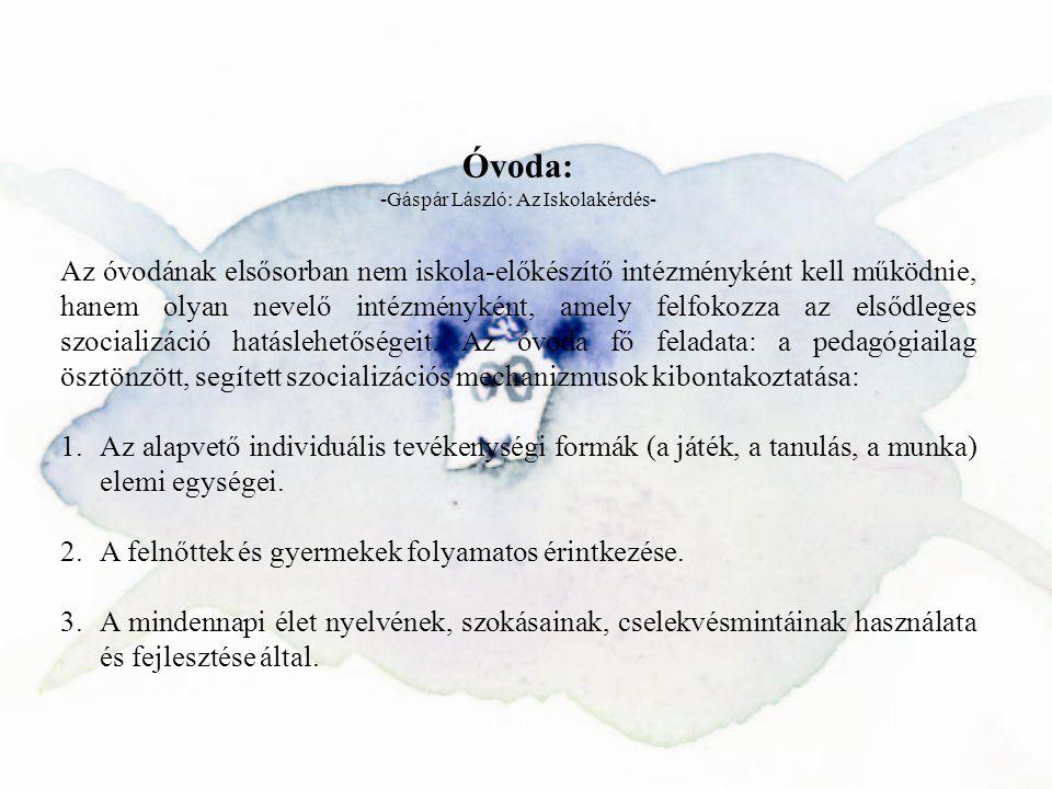 -Gáspár László: Az Iskolakérdés-
