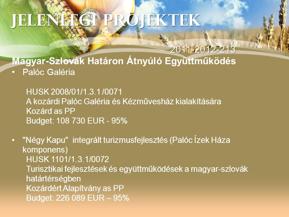 JELENLEGI PROJEKTEK 2011-2012-213