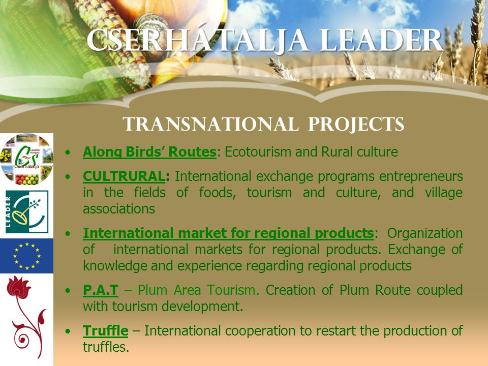 TRANSNATIONAL PROJECTS