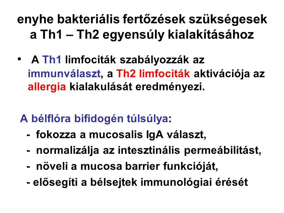 enyhe bakteriális fertőzések szükségesek a Th1 – Th2 egyensúly kialakításához