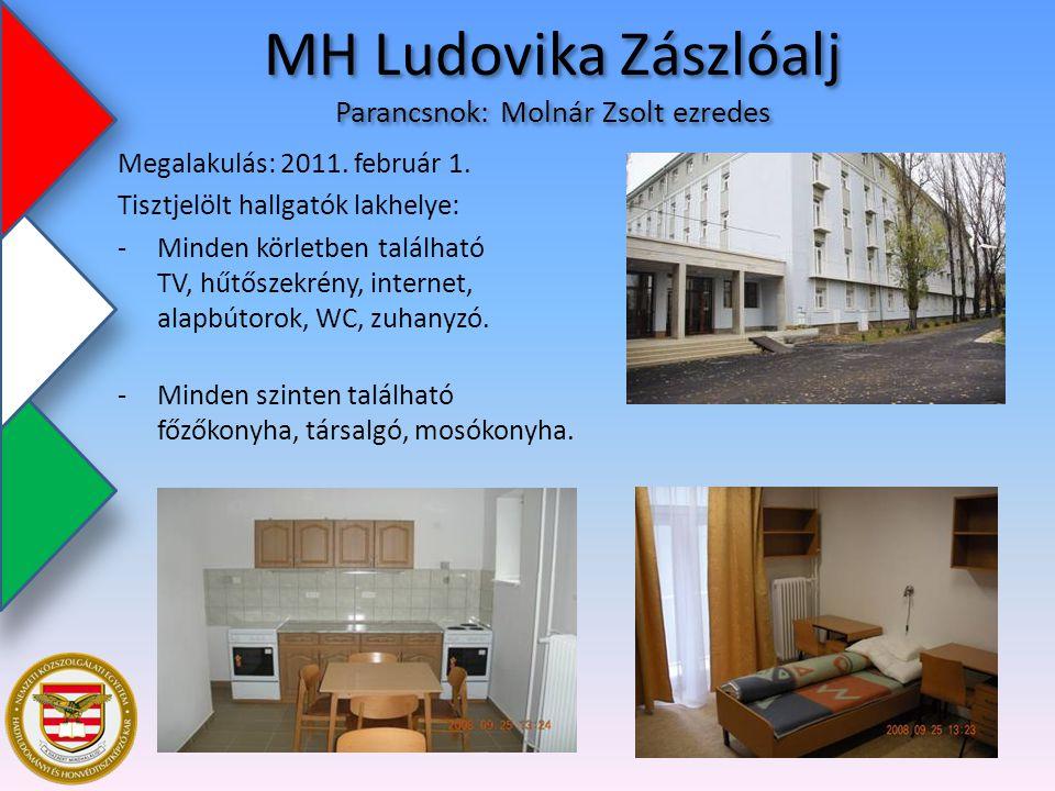MH Ludovika Zászlóalj Parancsnok: Molnár Zsolt ezredes