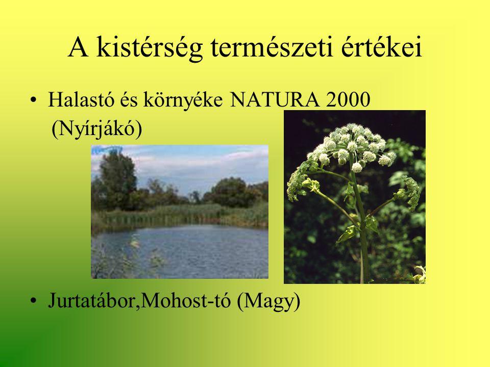 A kistérség természeti értékei