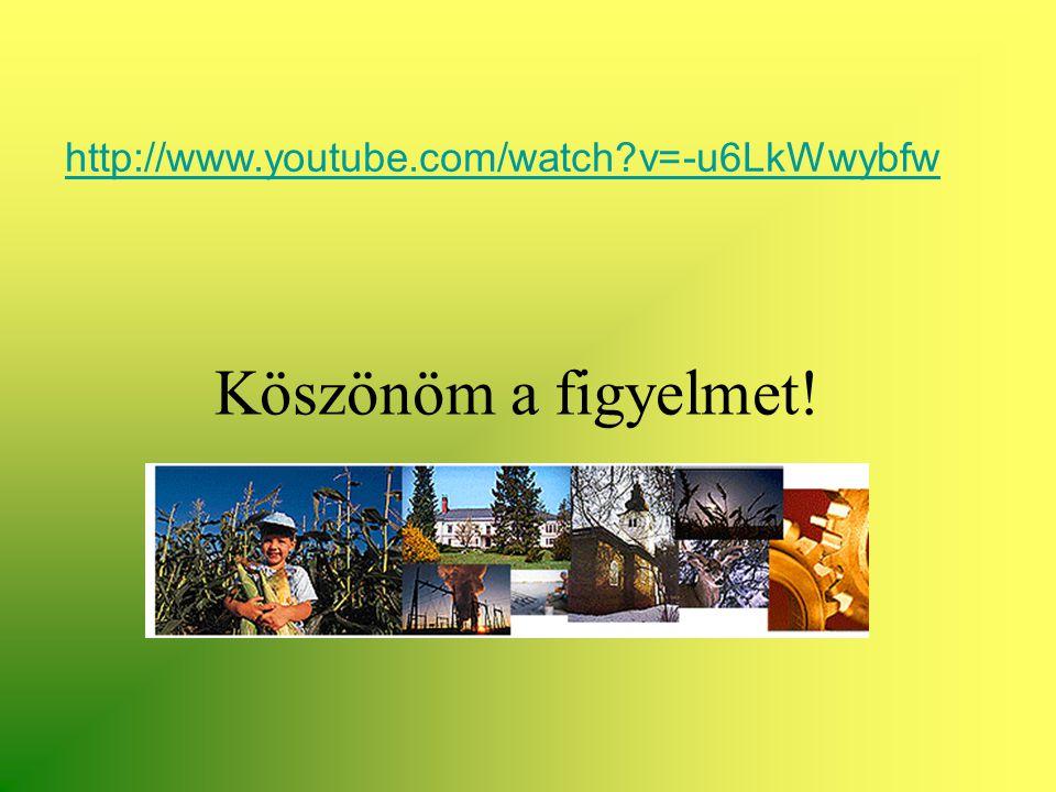 http://www.youtube.com/watch v=-u6LkWwybfw Köszönöm a figyelmet!