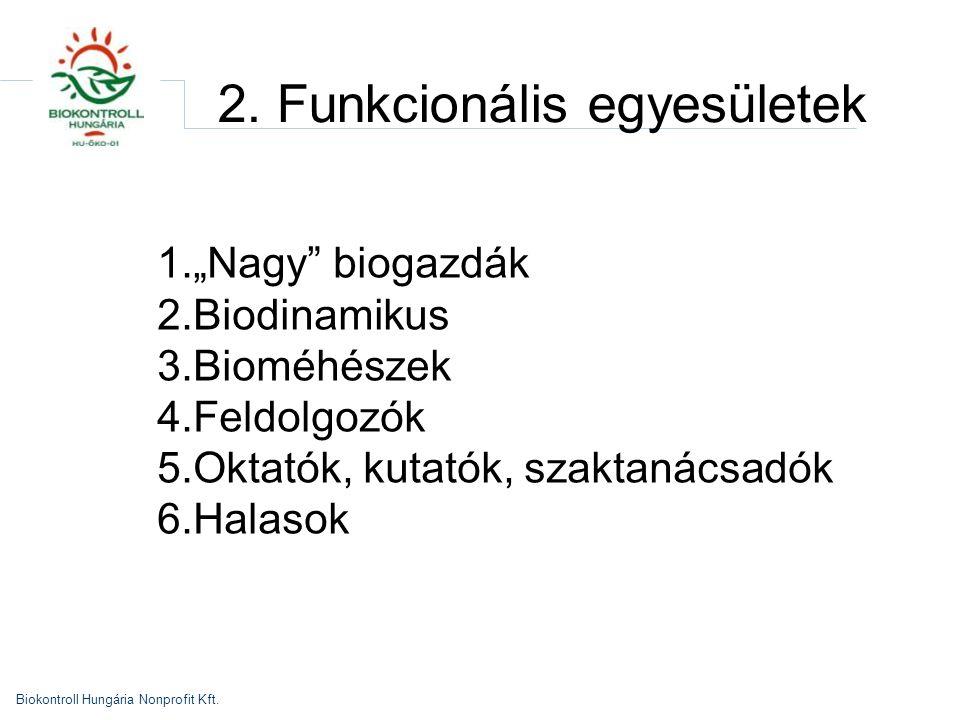 2. Funkcionális egyesületek