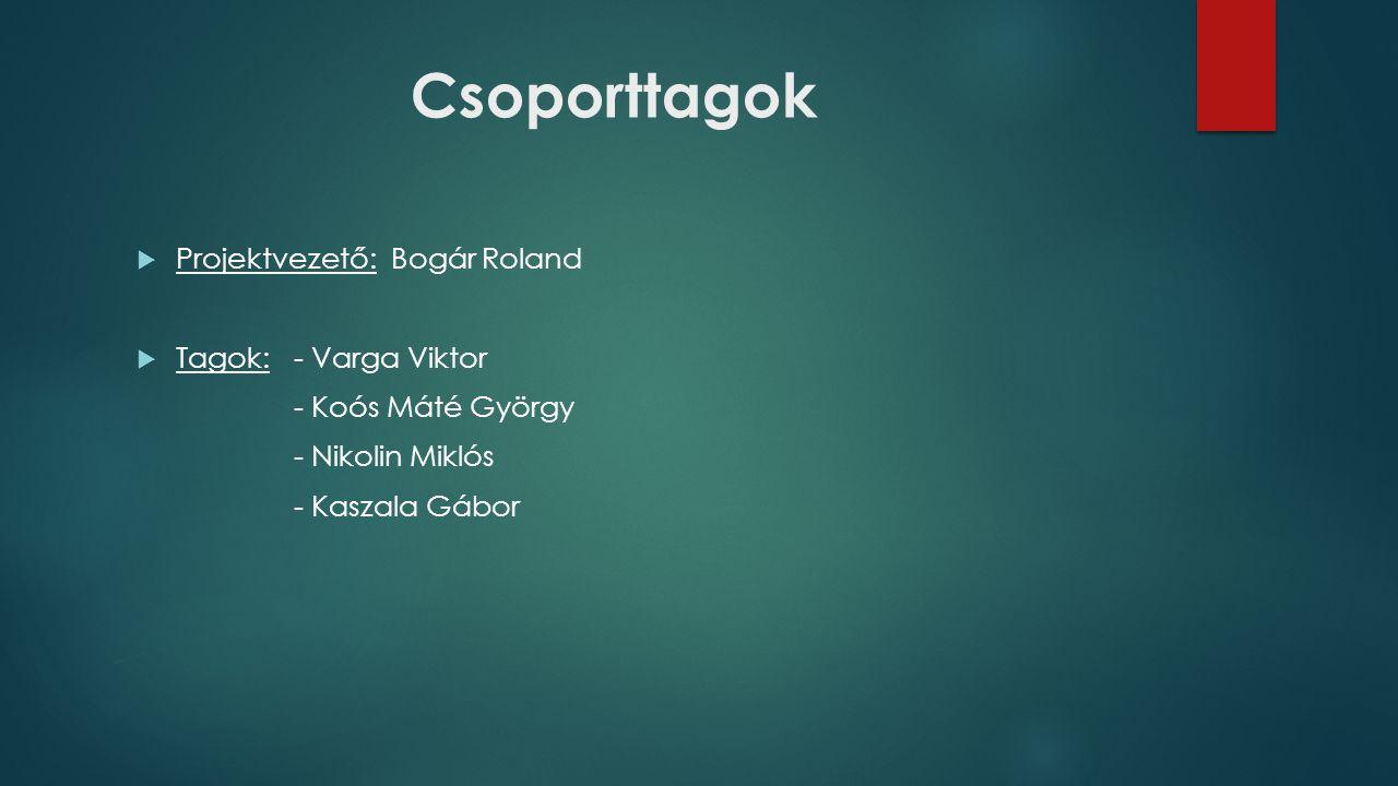 Csoporttagok Projektvezető: Bogár Roland Tagok: - Varga Viktor