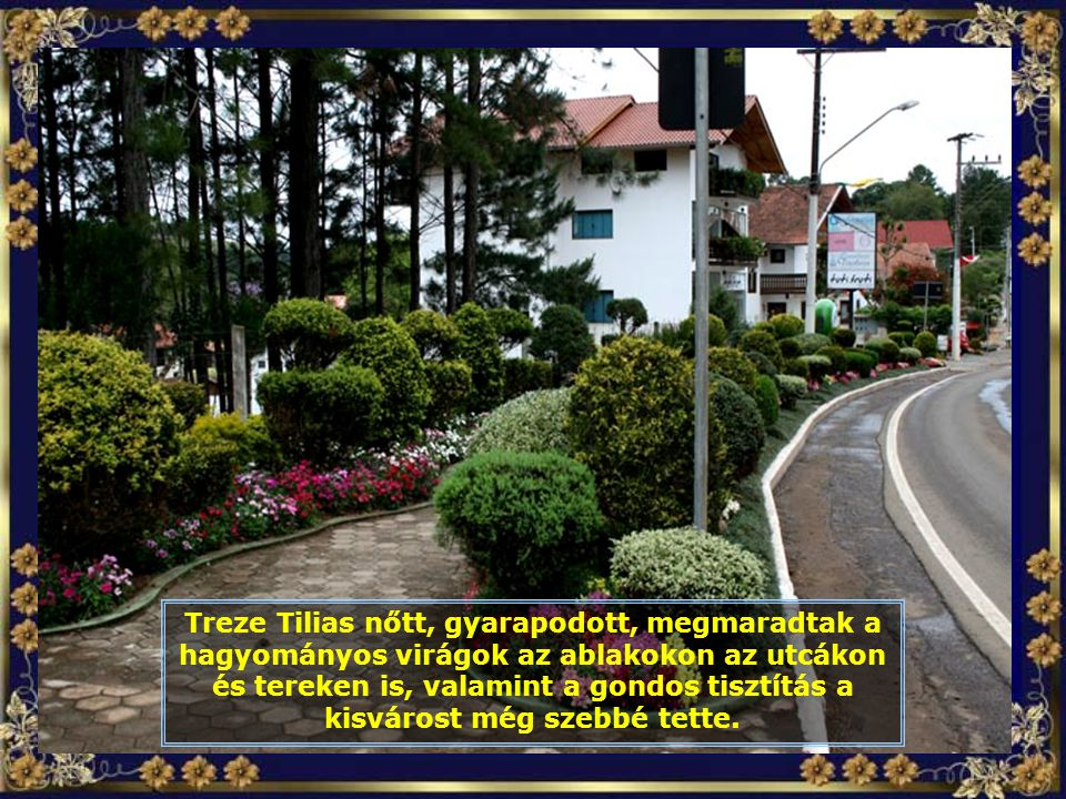 IMG_5792 - TREZE TÍLIAS - CIDADE COM FLORES-700.jpg