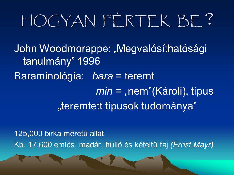 """HOGYAN FÉRTEK BE John Woodmorappe: """"Megvalósíthatósági tanulmány 1996. Baraminológia: bara = teremt."""