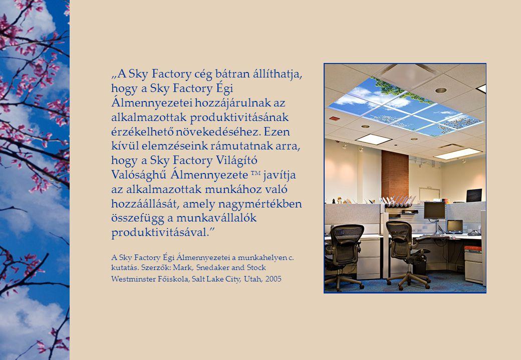 """""""A Sky Factory cég bátran állíthatja, hogy a Sky Factory Égi Álmennyezetei hozzájárulnak az alkalmazottak produktivitásának érzékelhető növekedéséhez. Ezen kívül elemzéseink rámutatnak arra, hogy a Sky Factory Világító Valósághű Álmennyezete ™ javítja az alkalmazottak munkához való hozzáállását, amely nagymértékben összefügg a munkavállalók produktivitásával."""
