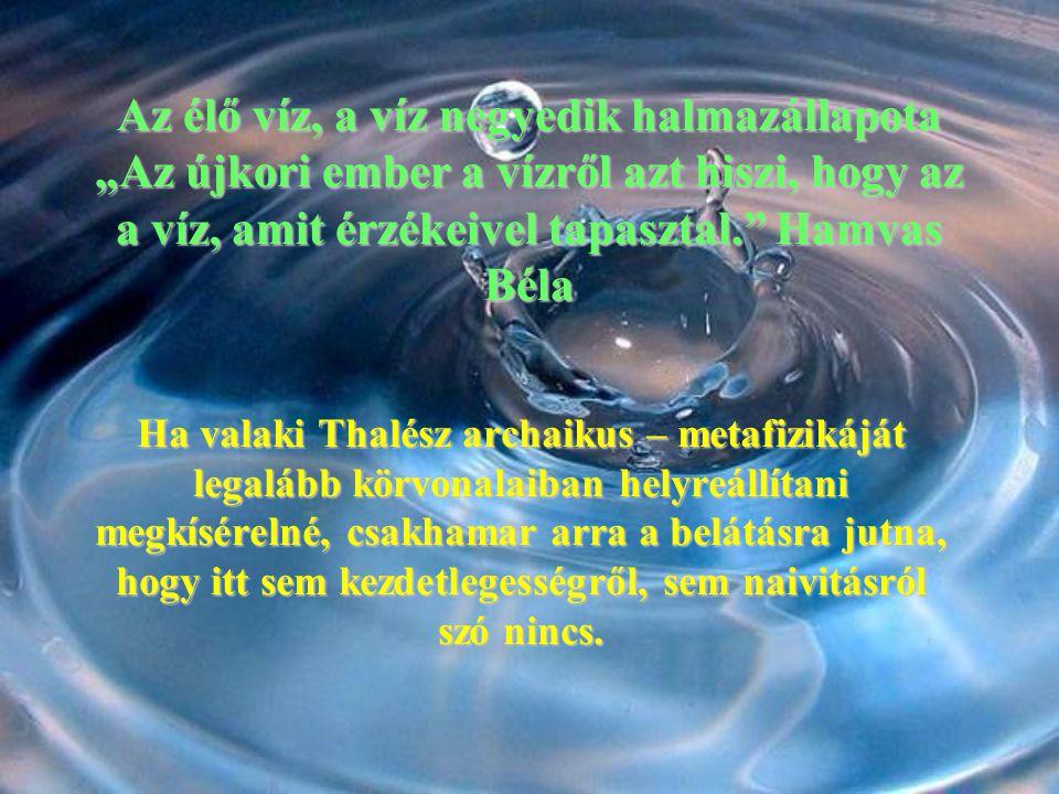 """Az élő víz, a víz negyedik halmazállapota """"Az újkori ember a vízről azt hiszi, hogy az a víz, amit érzékeivel tapasztal. Hamvas Béla"""